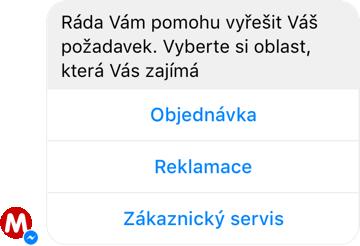 chatbot EVA