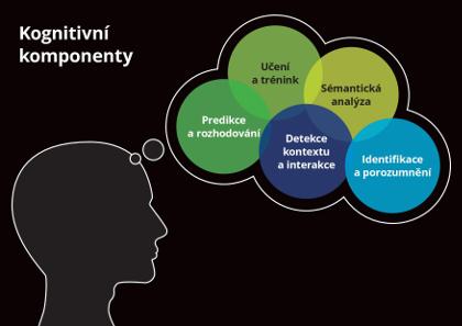 Kognitivní komponenty