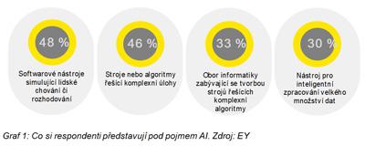 Co si respondenti představují pod pojmem AI. Zdroj: EY
