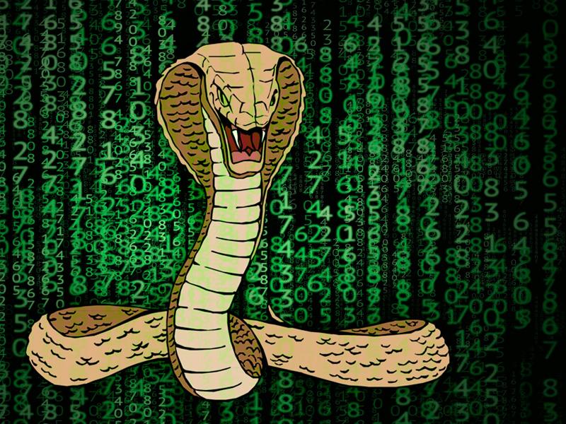 Ransoware Snake